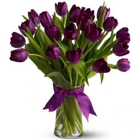 20 Tulipanes morados