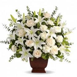 Centro para funeral Cf0037
