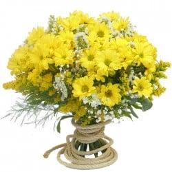 ramos de margaritas amarillas a domicilio en madrid