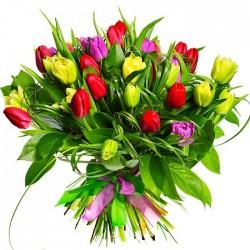 30 Tulipanes en Ramo