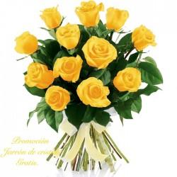 12 Rosas amarillas Premium