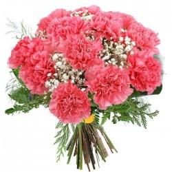 Docena de claveles rosa.