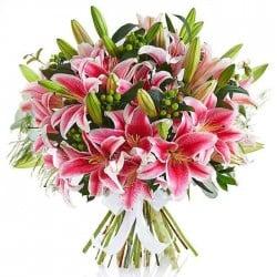 Lilium oriental perfumado