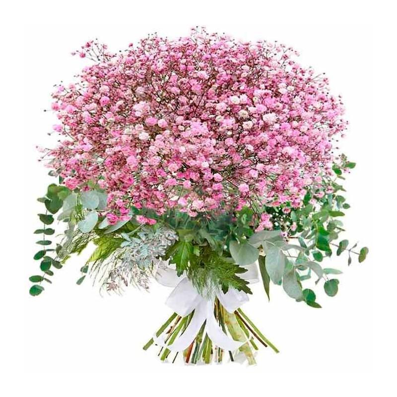 Paniculata rosa y eucalipto