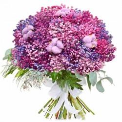 Paniculata rosa y algodón