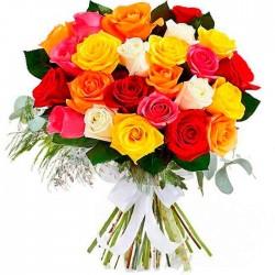 20 Rosas rojas Tc y peluche