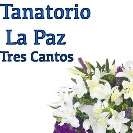 Tanatorio La Paz. Tres Cantos. FLORES