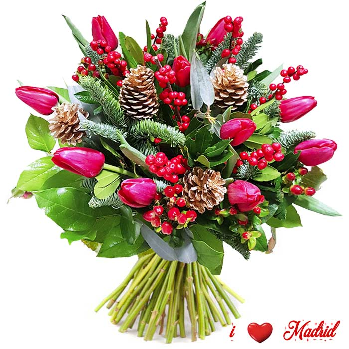 flores de pascua a domicilio madrid