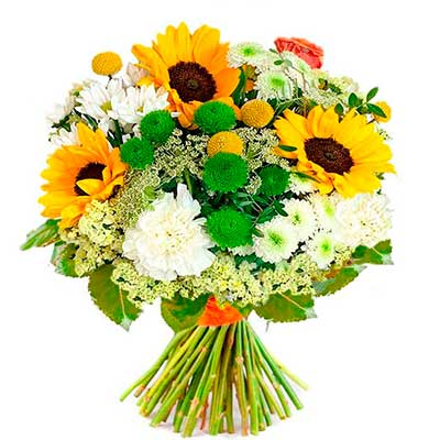 Flores para pedir perdón