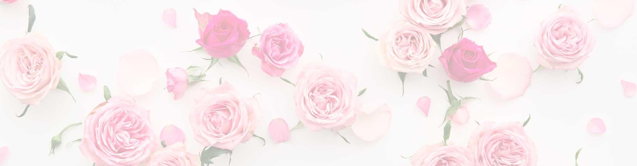 #entrega de rosas